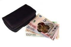 Деньги и бумажник евро Стоковое Изображение RF
