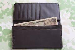 Деньги и бумажник Стоковые Изображения RF