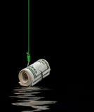 Деньги на рыболовном крючке над водой Стоковые Изображения RF