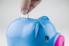 Деньги падения в голубой копилке Стоковые Фото