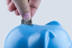 Деньги падения в копилке Стоковое Изображение