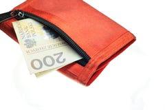 деньги Польша brifcase Стоковое Изображение