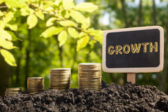Деньги растя, концепция успеха в бизнесе Золотые монетки в доске почвы на запачканной естественной предпосылке Стоковая Фотография RF