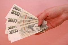 деньги руки Стоковые Изображения