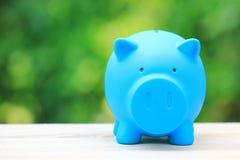 Деньги сбережений для подготавливают в будущей концепции, голубом положении копилки на естественной зеленой предпосылке стоковое фото rf
