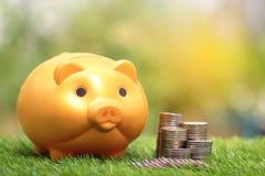 Деньги сбережений для подготавливают в будущем и концепции вклада, Golde стоковая фотография rf
