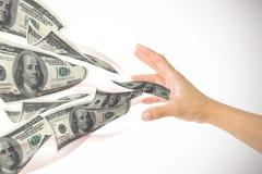 Деньги сбора в руке Стоковое Изображение RF