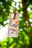 Деньги США, долларовые банкноты вися на веревочке прикрепленной с одеждами p Стоковое Фото