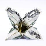 деньги цветения Стоковая Фотография