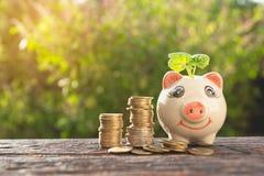 Деньги шага стога денег растущие и копилка, финансы b концепции стоковые изображения