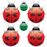 Деньги Ladybird иллюстрация вектора