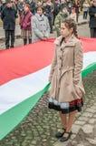 День венгров Стоковое Изображение