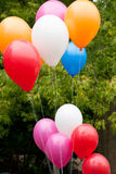 День воздушных шаров вначале школы Стоковые Фото