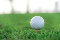 День гольфа Шар для игры в гольф на тройнике для шара для игры в гольф на gree Стоковые Изображения