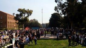 День данным по организаций студента на начале UCLA года видеоматериал