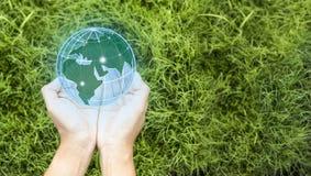 День земли в руках деревьев растя саженцы Спасительная концепция мира и нововведения, девушка держа небольшие завод или деревце д стоковые фото