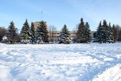 День зимы солнечный Стоковые Фото