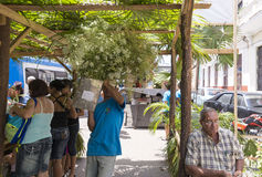 День матери Кубы Стоковая Фотография