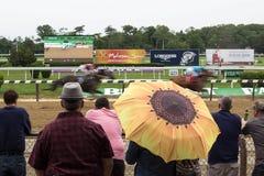 День на гонках Belmont Park Нью-Йорке стоковая фотография