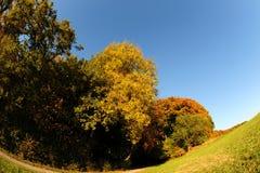 день октябрь Стоковая Фотография