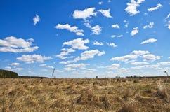 День осени в поле Стоковые Фото
