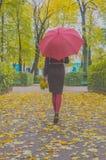 День осени девушка с листьями и зонтиком в парке Стоковая Фотография