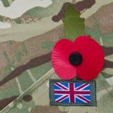 День памяти погибших в первую и вторую мировые войны Стоковое Фото
