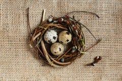 День пасхи Небольшое гнездо с яйцами триперсток на предпосылке дерюги, текстуре мешковины стоковое фото rf