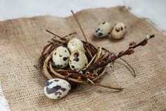 День пасхи Небольшое гнездо с яйцами триперсток на предпосылке дерюги, текстуре мешковины стоковое изображение