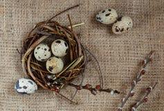 День пасхи Небольшое гнездо с яйцами триперсток на предпосылке дерюги, текстуре мешковины стоковые изображения