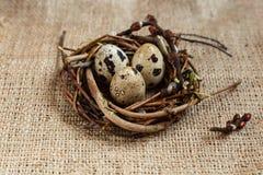 День пасхи Небольшое гнездо с яйцами триперсток на предпосылке дерюги, текстуре мешковины стоковая фотография