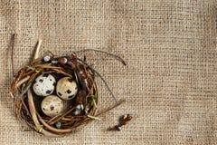 День пасхи Небольшое гнездо с яйцами триперсток на предпосылке дерюги, текстуре мешковины С открытым космосом для входного сигнал стоковая фотография rf