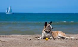 день пляжа Стоковое Фото