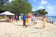 День приюта для животных на пляже Стоковые Изображения RF