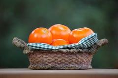 День сада лета корзины томата Стоковое Изображение RF