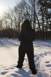 День снега Стоковая Фотография RF