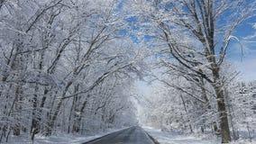 День снега Стоковые Изображения