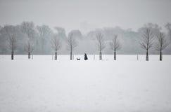 день снежный Стоковые Изображения RF