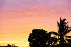 День солнца утра на цвете золота неба стоковые изображения rf