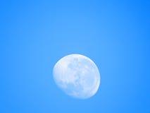 День луны Стоковые Фото