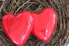 День ` s валентинки, 2 ярких красных сердца в гнезде Стоковое Фото
