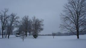 День Snowy вне в поле стоковые фотографии rf