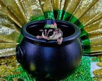 День St. Patrick планера сахара Стоковые Фотографии RF