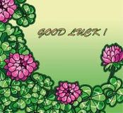 День St. Patrick цветков и листьев клевера вектора Стоковая Фотография