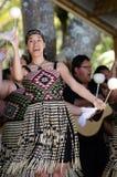 День Waitangi и празднество - праздничный день 2013 Новой Зеландии стоковое изображение