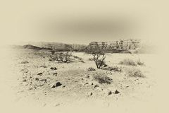 Депрессия и пустота в черно-белом Стоковые Изображения RF