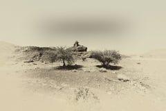 Депрессия и пустота в черно-белом Стоковые Изображения