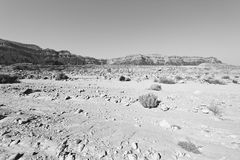 Депрессия и пустота в черно-белом Стоковая Фотография RF
