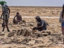 ДЕПРЕССИЯ DANAKIL, ЭФИОПИЯ, 29-ое апреля 2019, Afars вероятно самые жесткие люди в мире В депрессии Danakil стоковые изображения rf