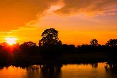 Дерева силуэта ландшафта захода солнца и света справедливо река воды красивого красочного рефлекторное во времени сумерк неба Стоковые Изображения